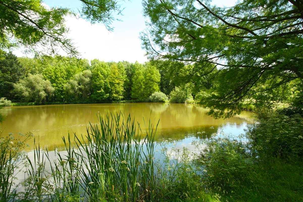Parc des Gayeulles à Rennes