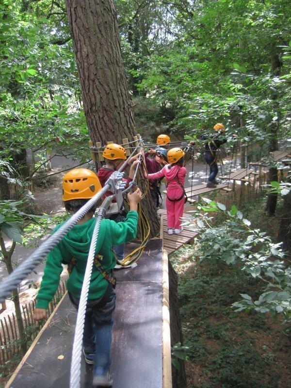 Forêt Adrénaline aux Gayeulles