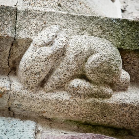 details-archi-animaux-destination-jm-8-jpg-800px-3168