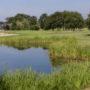 golf-cice-blossac-rennes-5-f-malard