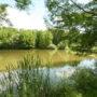 parc-gayeulles-d-gouray-2