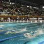 piscine-brequigny-2-d-gouray