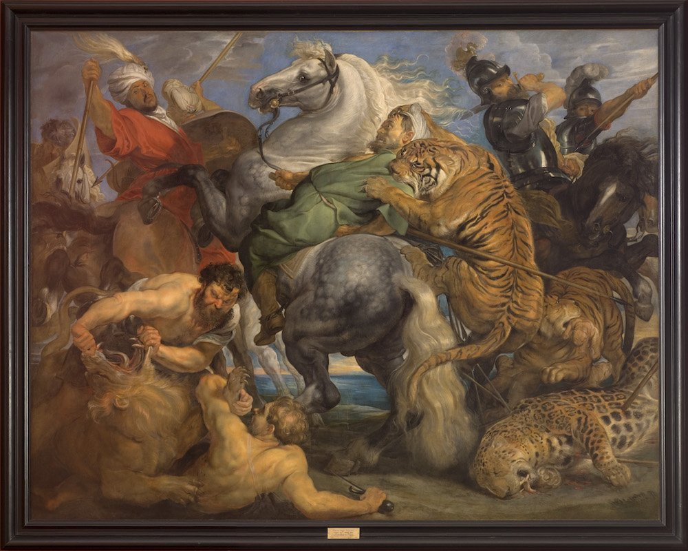 La chasse au Tigre de Rubens
