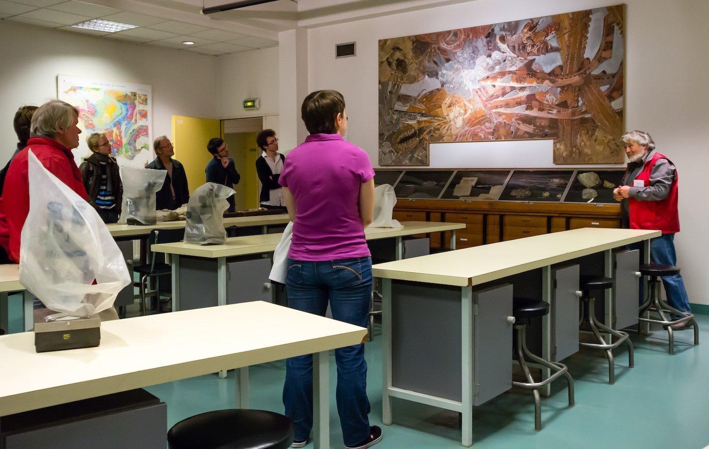 Les collections scientifiques de Rennes 1