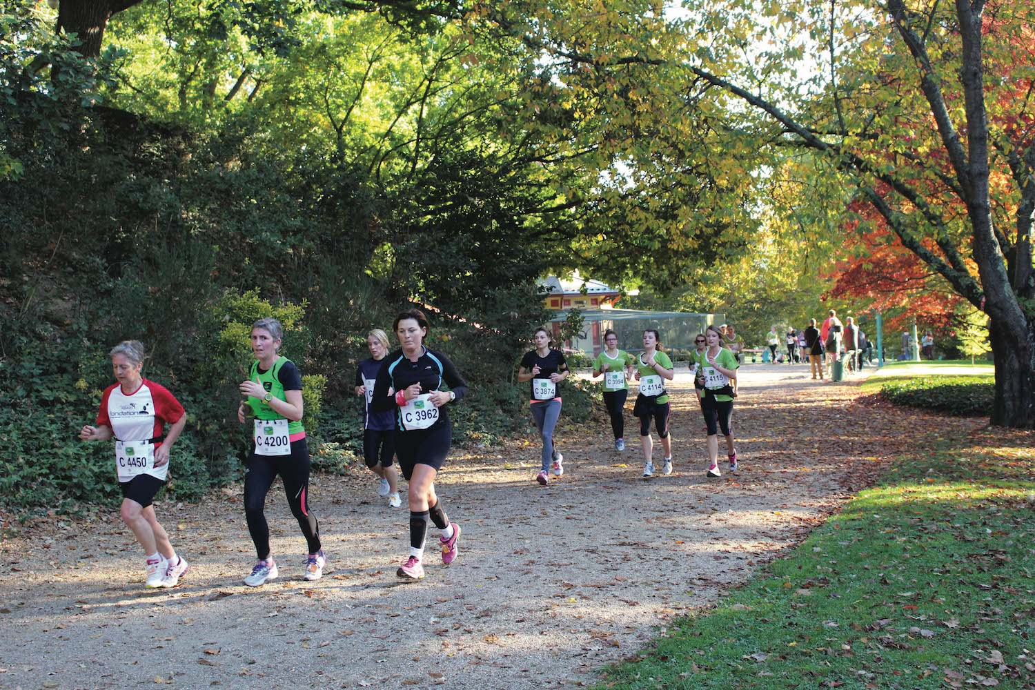 The female course - The Green Marathon
