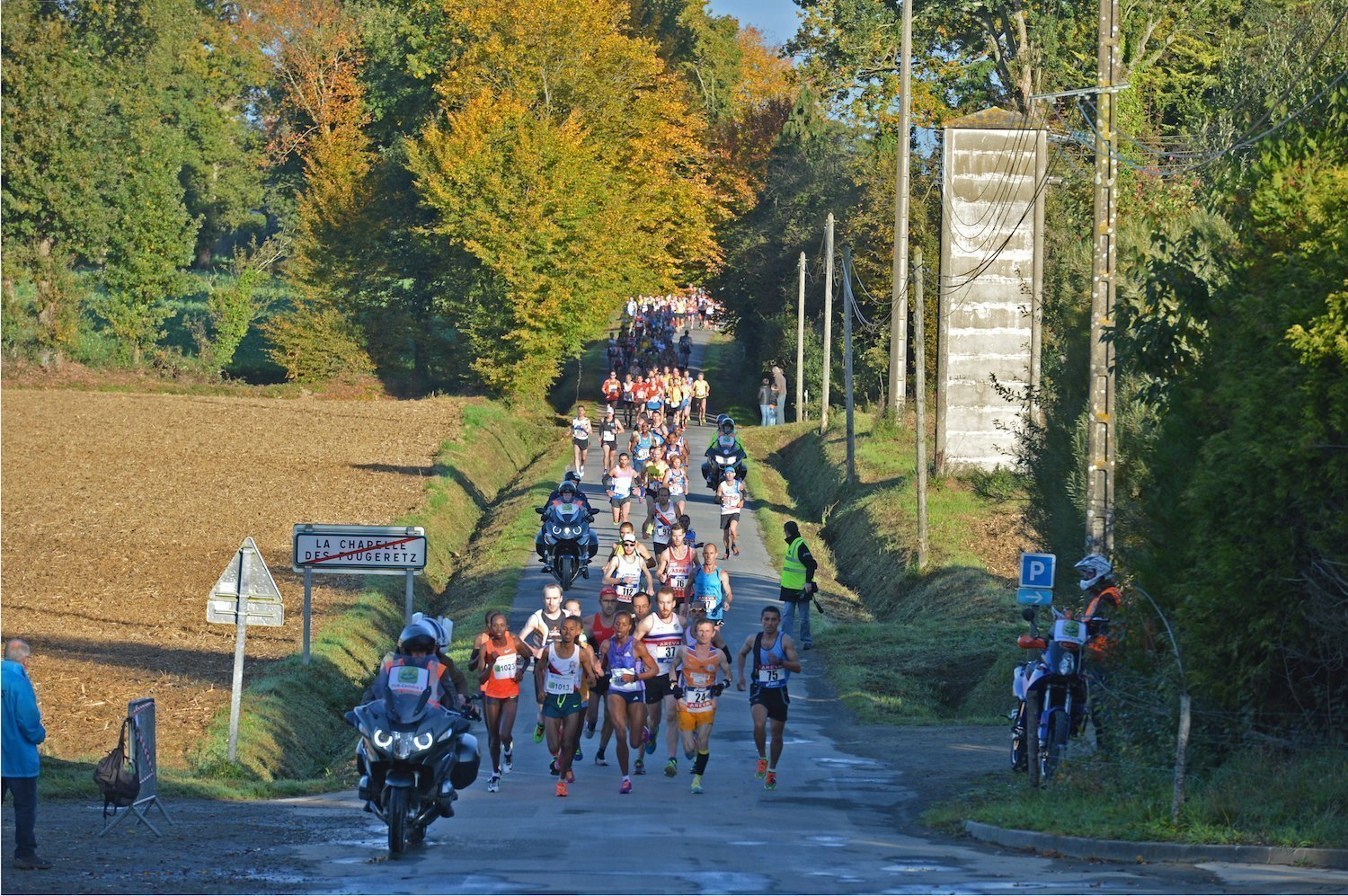 A route combining town and country - The green marathon