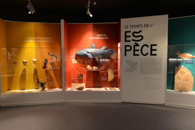 Exposition Eternité à Rennes
