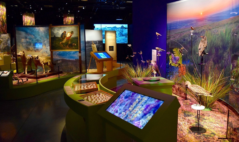 Exposition sur les landes à l'Ecomusée de Rennes