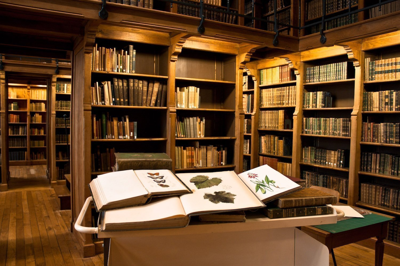 Bibliothèque Agrocampus