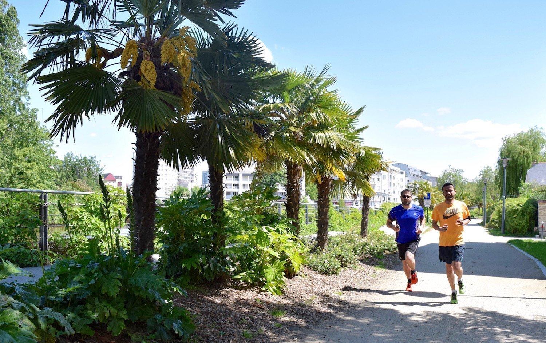 Running sur le quai Dauchel à Rennes