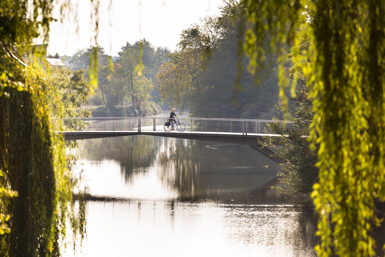Pont à vélo sur la Vilaine