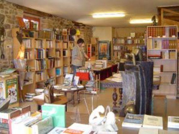 le-donjon-libraire-rennes