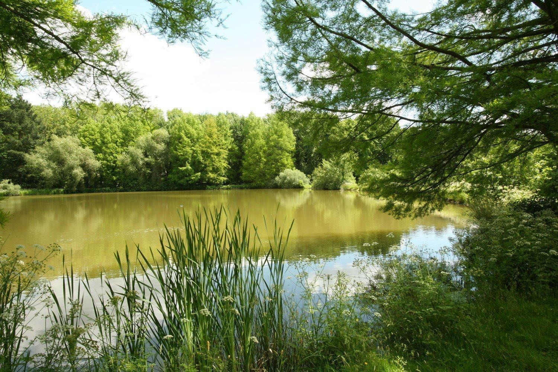 Le parc des Gayeulles à Rennes est un parc prisé par les étudiants à Rennes