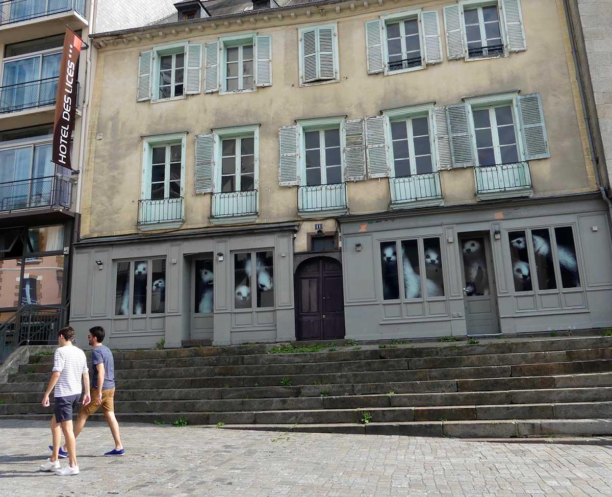 Les hermines envahissent les rues de Rennes