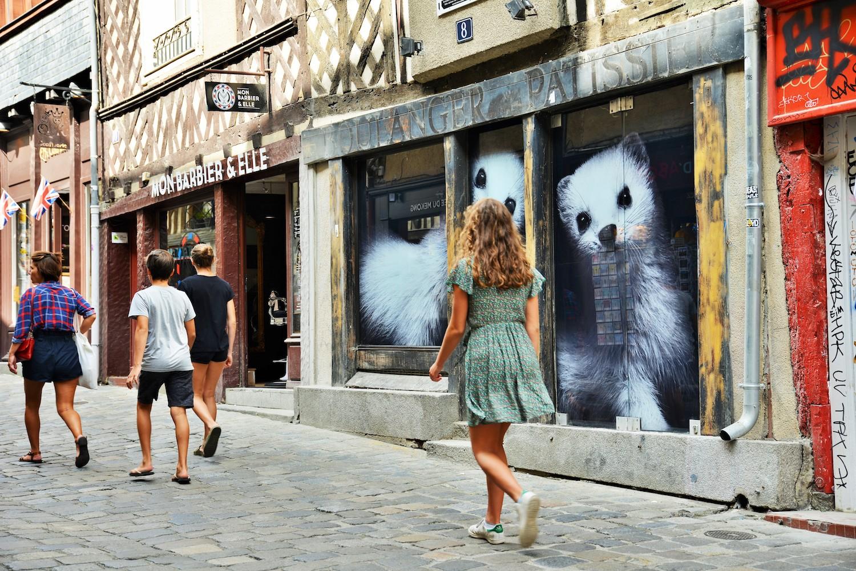 Les hermines de la rue Pont aux Foulons