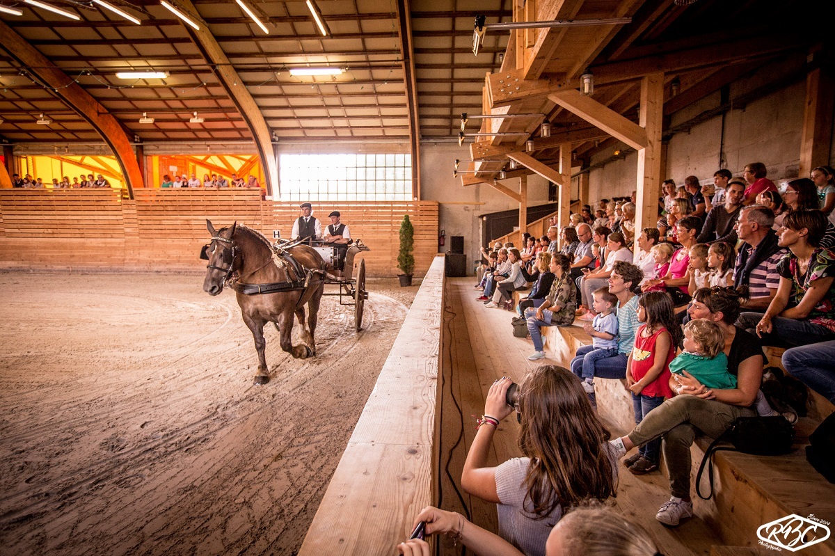 Concours national du cheval - Lamballe