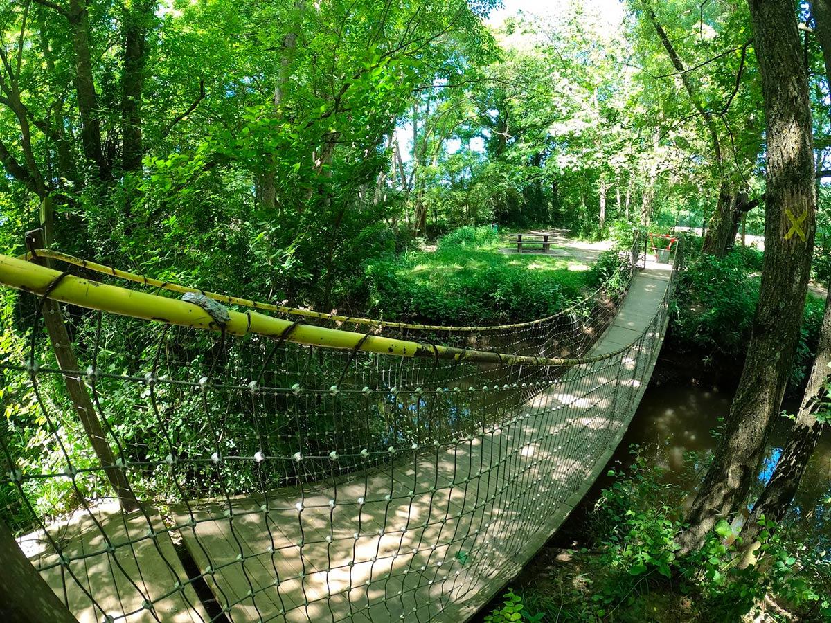Pont de singe - Bois de Champagne