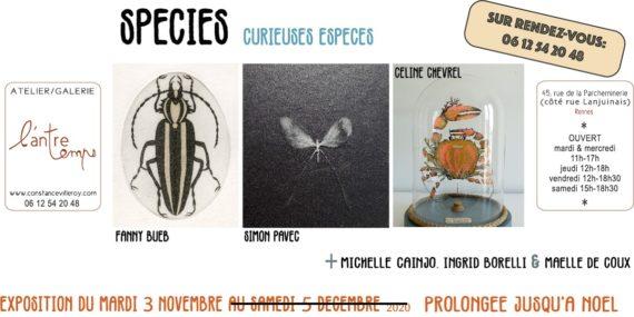 species-curieuses-espèces-l'antretemps-rennes