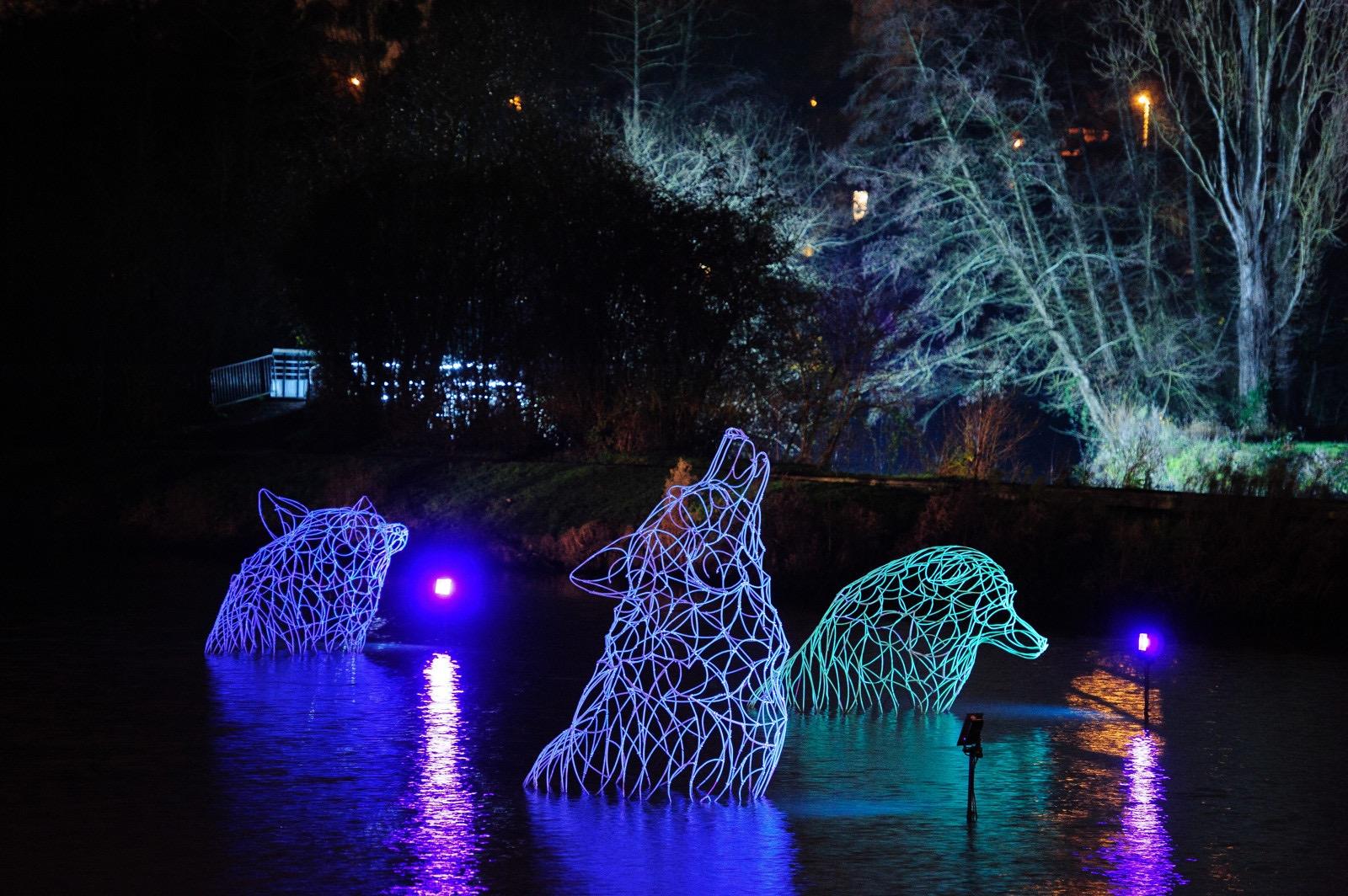 Silhouettes de loups géants sur le plan d'eau de Betton