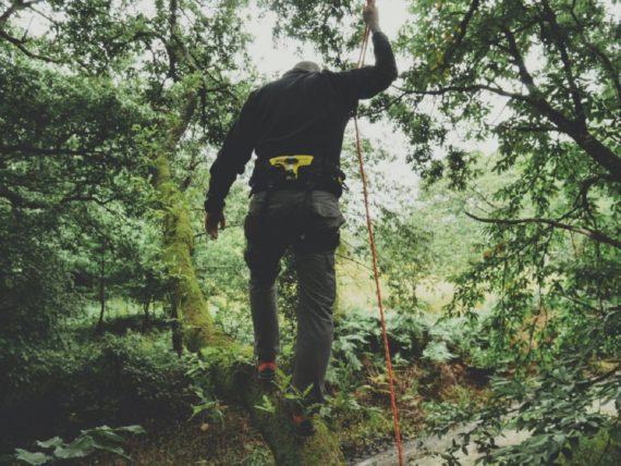 stage-de-grimpe-d-arbre-la-haut-rennes