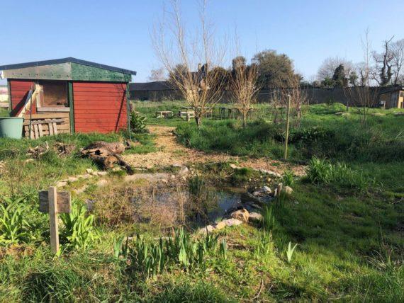 jardin-des-mille-pas-rennes-1-3284