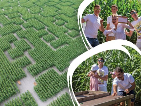 pop-corn-labyrinthe-rennes-montgermont-3299