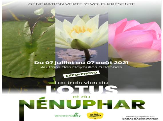 2021-les-trois-vies-du-lotus-et-du-nenuphare-10299