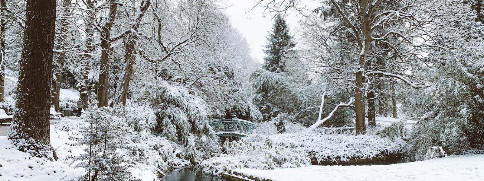 Le Thabor sous la neige
