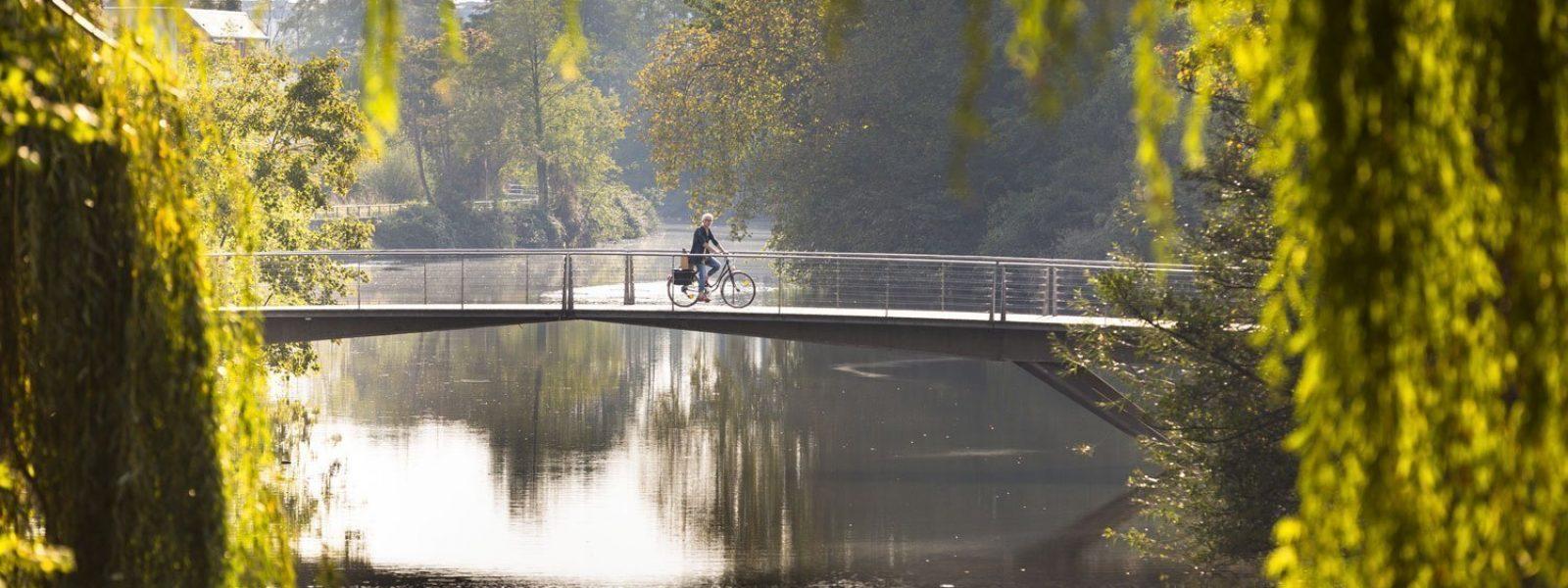 Rennes côté nature